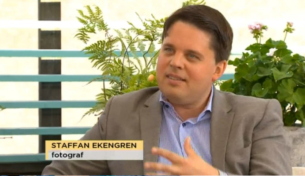 staffan tv4