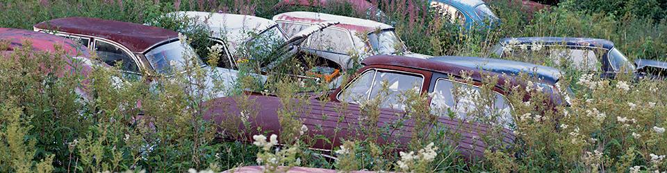 Cemetery Love | #kärlektillenskrot